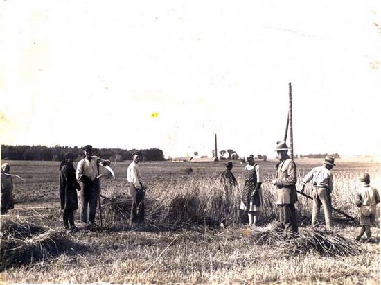 Kalvarijos apylinkės 1918
