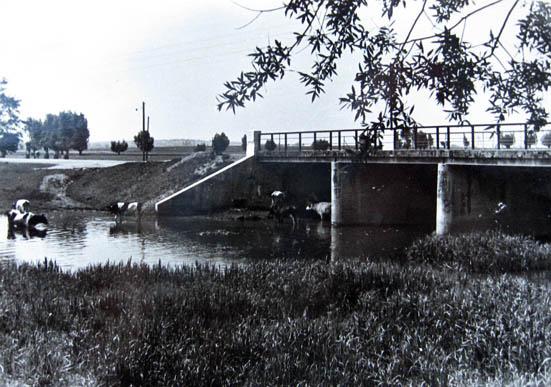 Kalvarija, tiltas per Šešupę 1960