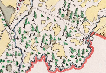 Карта лесничества Котранского