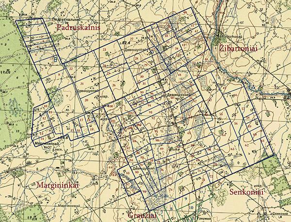 Devynduoniai 1950